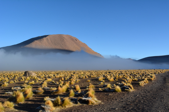 chile_el_tatio_3-6-2016_1-20-46_pm_-_copy.jpg