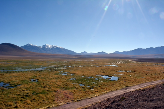 chile_el_tatio_3-6-2016_2-49-55_pm_-_copy.jpg