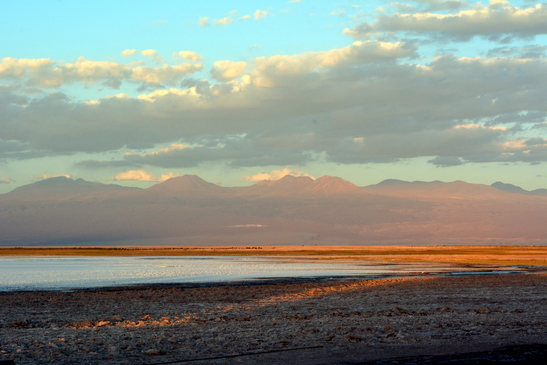 chile_laguna_cejar_3-7-2016_12-54-34_am_-_copy.jpg