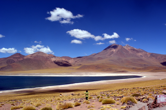 chile_laguna_miniques_3-7-2016_7-48-52_pm_-_copy.jpg
