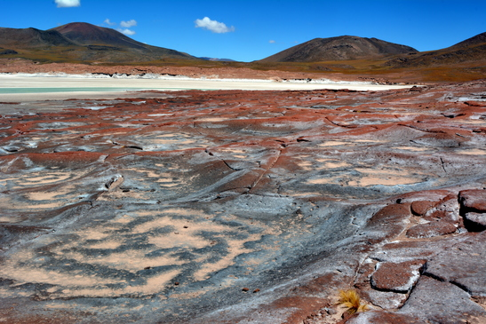 chile_salar_de_atacama__3-7-2016_5-37-27_pm_-_copy.jpg