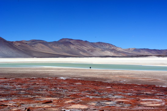 chile_salar_de_atacama__3-7-2016_6-01-11_pm_-_copy.jpg