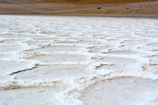 chile_salar_de_atacama__3-7-2016_6-41-52_pm_-_copy.jpg